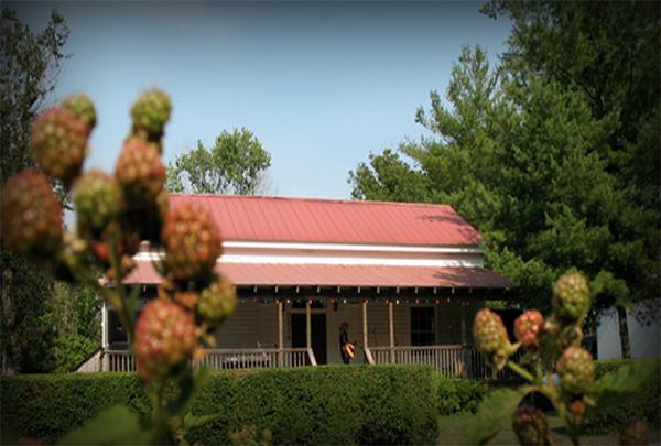 Boyd Mill Farm